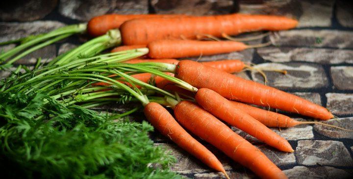 carottes bienfaits